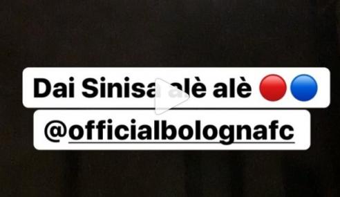 Giocatori Bologna sotto l'ospedale di Sinisa Mihajlovic dopo la vittoria (Video)